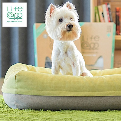 Lifeapp 愛兒堡寵物空氣床 L(整組可拆可洗/二色可選)