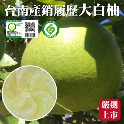 【天天果園】產銷履歷台南麻豆特優級白柚20斤