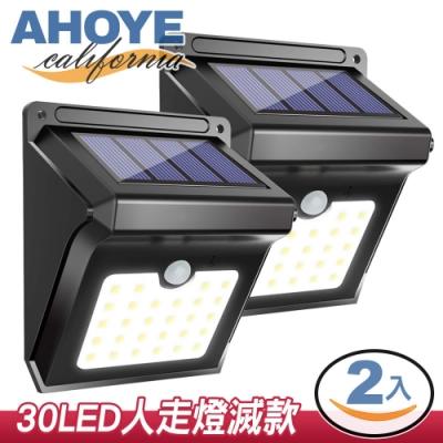 AHOYE IP65防水太陽能感應燈 2入組