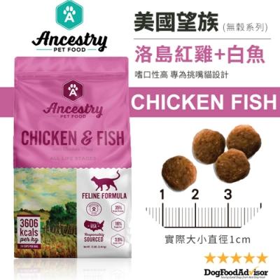 美國Ancestry望族天然無穀低敏貓糧-洛島紅雞+大西洋白魚 4LBS(1.81kg) 兩包組