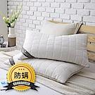 夢特嬌-抗菌防蟎枕 / 2入