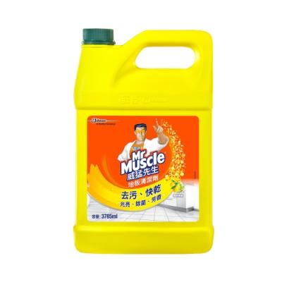 箱購︱威猛先生 地板清潔劑-清新檸檬加侖桶 3785ml *4入