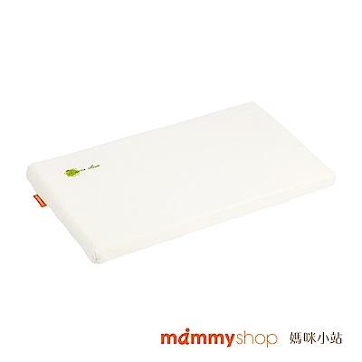 【媽咪小站】VE系列-嬰兒多功能平枕(3kg以上適用)