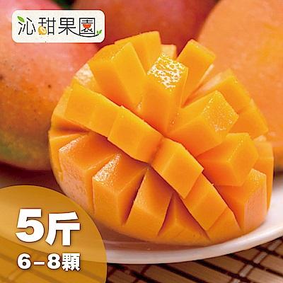 沁甜果園SSN 台南愛文芒果(6-8粒裝/5台斤)