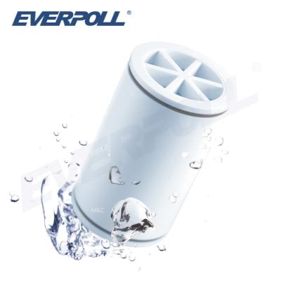 【EVERPOLL】微分子SPA沐浴器專用濾芯(MKC)
