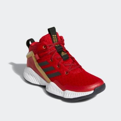 ADIDAS 運動鞋 緩震 包覆 大童 女鞋 紅 LOCKDOWN J FZ1693