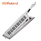 [無卡分期-12期] ROLAND AX-Edge Keytar 演奏型合成器 白色版本