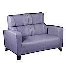 綠活居 羅莎貓抓皮革二人座沙發椅(三色)-131x76x96免組