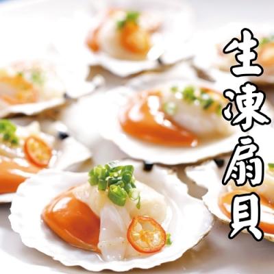 【海陸管家】頂級生凍半殼大扇貝4包(每包約500g)