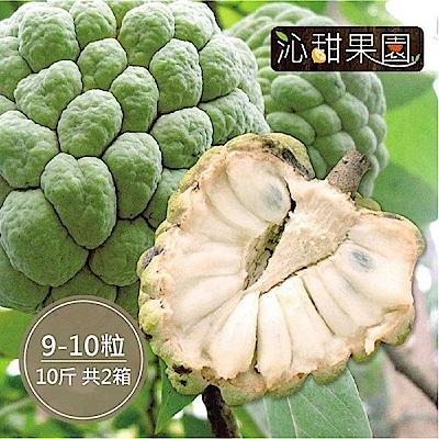 沁甜果園SSN 台東大目釋迦(9-10顆裝/10台斤)(共2箱)