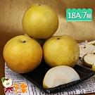 果之家 頂規特大18A東勢特級青龍梨新興梨7顆禮盒 (620g/顆)