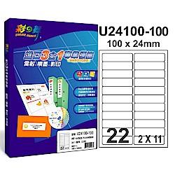 彩之舞 【U24100-100】 A4 3合1 22格(2x11) 標籤紙 300張