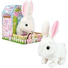 Puppy Familly  - 公主兔 小白兔 兔兔 電子寵物