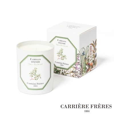 法國CARRIERE FRERES 天然手工香氛 茶樹 Tea Plant 185g