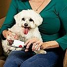 TV爆款》Paw Perfect寵物貓狗LED電動磨甲器