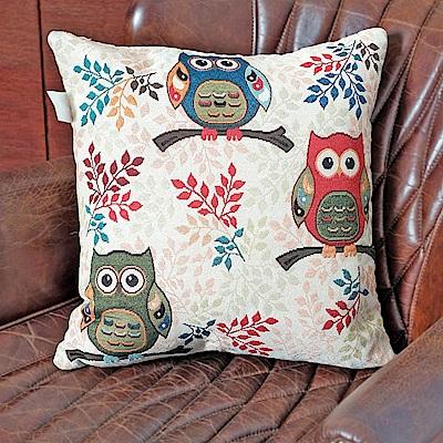 凱蕾絲帝-居家沙發車用-緹花方形抱枕/靠枕(45CM)-三隻貓頭鷹(一入)