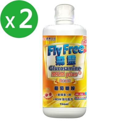 (開館買就送b群)【信東】飛靈葡萄糖胺液 (946ml/瓶)X2瓶