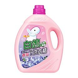 白鴿 天然濃縮抗菌洗衣精 迷人小蒼蘭香氛-3500g