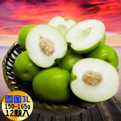 【果之家】燕巢產銷履歷網室特選珍稀品爆汁3L款雪梨蜜棗12顆裝(單顆155g)