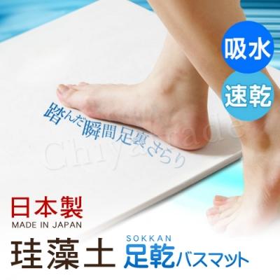 日本藤原境內版 日本製 珪藻土 足乾樂 超速吸水地墊-L(日本建材級)
