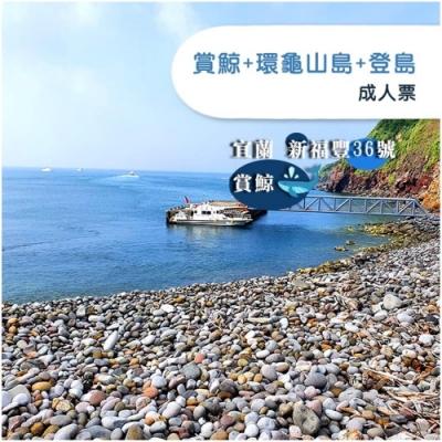 (宜蘭)新福豐36號賞鯨+環龜山島+登島-成人票