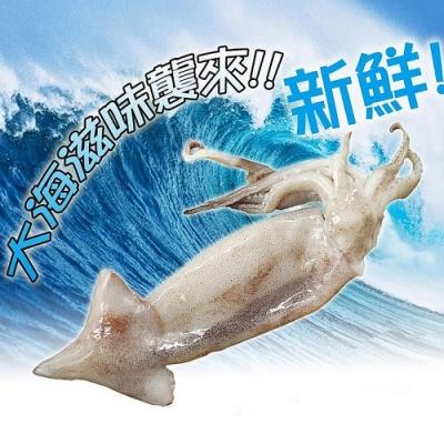 賣魚的家‧深海大魷魚 (220g±5%/尾,共三包)