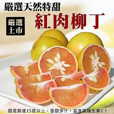 【天天果園】嚴選台灣紅肉柳丁5斤 x1箱
