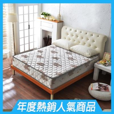雙人加大6尺 酷涼感抗菌 側邊強化獨立筒床墊 正反可睡 Ally愛麗