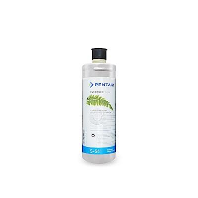 水蘋果公司貨 EVERPURE S54 淨水濾心
