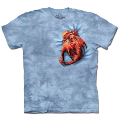 摩達客-美國The Mountain 小火龍 純棉環保藝術中性短袖T恤