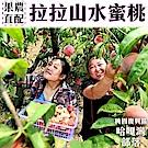 【天天果園】拉拉山五月水蜜桃(媽媽桃)10粒4盒(每盒約2.5斤)