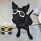 COMET 時尚寵物太陽眼鏡(DG-001)