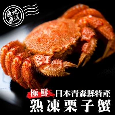 (滿699免運)【海陸管家】日本熟凍栗子母蟹1隻(每隻約150-180g)
