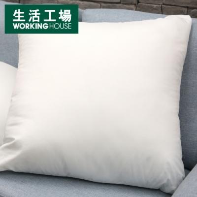 【週年慶倒數↗全館限時8折起-生活工場】枕心500g(45*45)