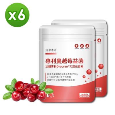 【達摩本草】法國專利蔓越莓益生菌x6包 (滿滿36毫克A型前花青素、私密呵護)