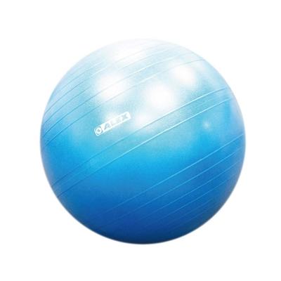 ALEX 韻律球-55CM-台灣製 附打氣筒 健身 訓練 瑜珈球 B-3055 依賣場