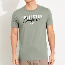 海鷗 Hollister 經典刺繡大海鷗文字短袖圖案T恤-淺綠色