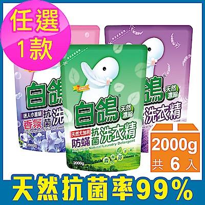 [時時樂限定]白鴿 抗菌洗衣精補充包2000g 6入/箱(多款任選)