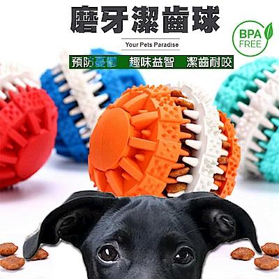 COMET 寵物益智抗憂鬱磨牙球組(DG-002)
