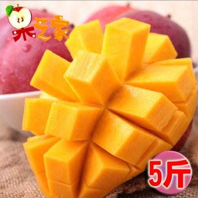 果之家 台南玉井AA級愛文芒果5斤(約7-10顆入)