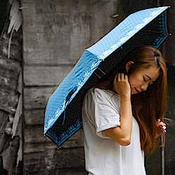雙龍TDN 三折輕量黑膠遮陽傘