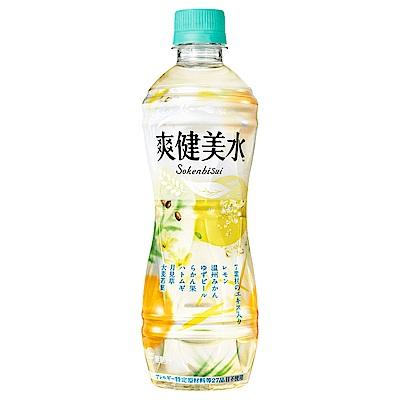 爽健美水 ( 500 ml)