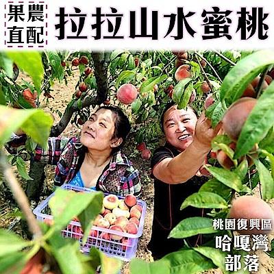 【天天果園】拉拉山五月水蜜桃(媽媽桃)8粒2盒(每盒約2.5斤)