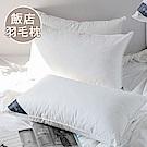 澳洲Simple Living 100%飯店專用舖棉羽毛枕-一入(台灣製)