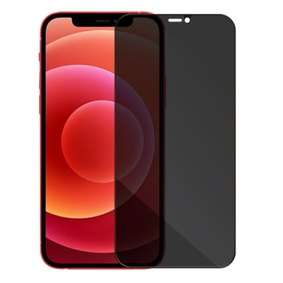 Metal-Slim Apple iPhone 12 mini 0.3mm 防窺全滿版9H鋼化玻璃貼