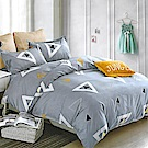 LAMINA 羅曼蒂克 加大四件式 柔絲絨兩用被床包組