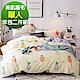 Ania Casa清新鳳梨 柔絲絨美肌磨毛 台灣製 單人床包枕套兩件組 product thumbnail 1