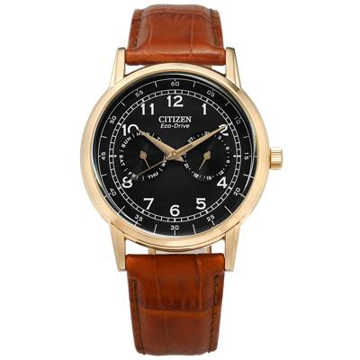 CITIZEN 光動能 星期日期 礦石強化玻璃 真皮手錶-黑x香檳金框x紅褐/42mm