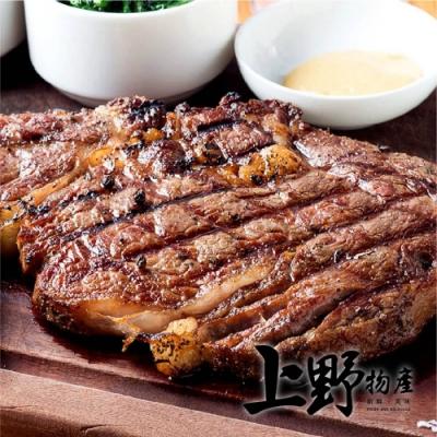 (滿899免運)【上野物產】澳洲安格斯雪花牛排 (100g土10%/片)x1