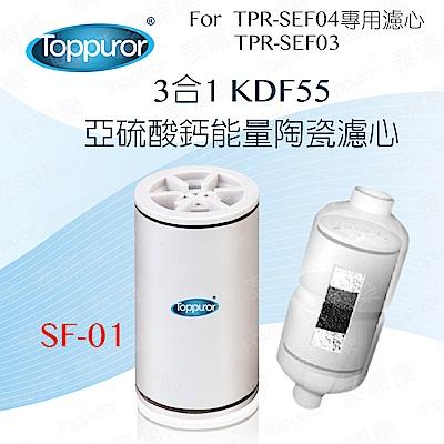 【Toppuror 泰浦樂】3合1 能量陶瓷沐浴專用濾心 SF-01